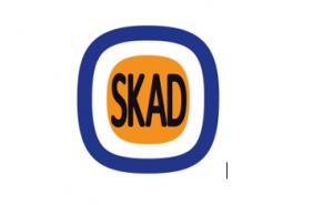 Custombranchen.dk (SKAD)