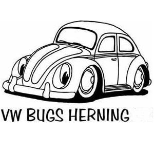 VW Bugs Herning